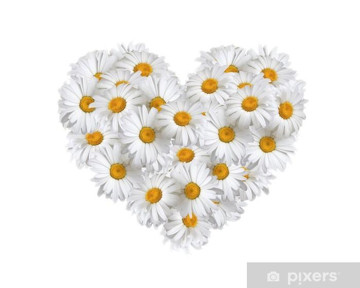 Nálepka Pixerstick Láska, srdce sedmikrásky - Květiny