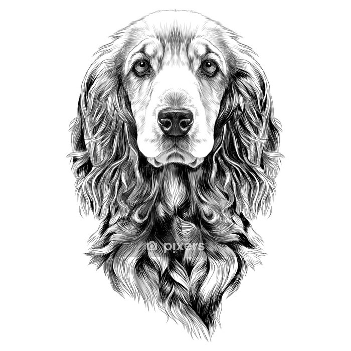 Black and white dog drawing - photo#50