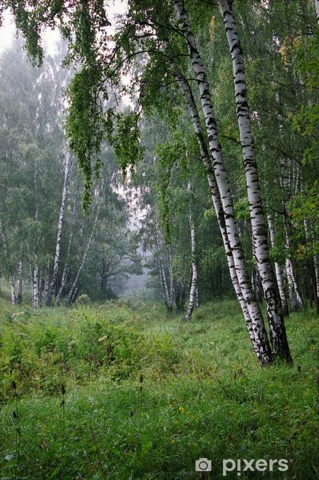 Naklejka Pixerstick Rano w lesie - Sporty na świeżym powietrzu