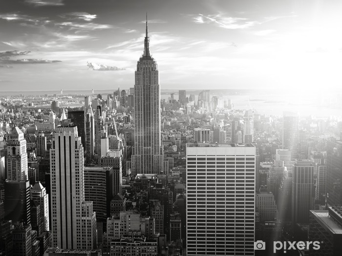 New York Skyline Wall Mural Vinyl