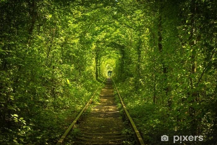 Naklejka Pixerstick Stary las i kolejowy tunel miłości - Budynki i architektura