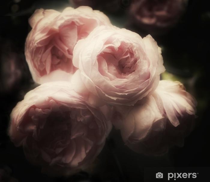 Fototapeta zmywalna Piękny bukiet różowych róż na ciemnym tle, delikatny i romantyczny, uroczy filtr, vintage kwiaty wyglądające jak stary obraz - Rośliny i kwiaty