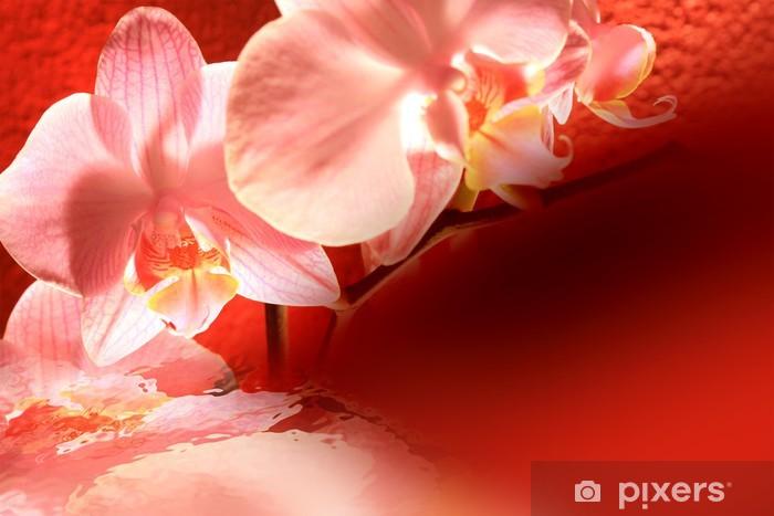 Vinyl-Fototapete Orchid rot Hintergrund - Blumen