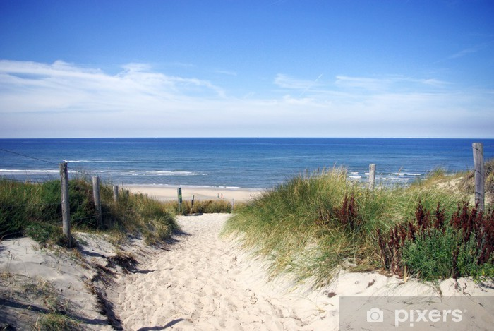 Fotomural Estándar Callejón de la playa - Países Bajos