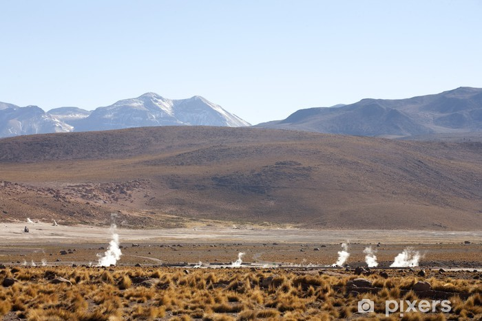 Vinyl Fotobehang Geisers del Tatio op Andes, Chili - Amerika