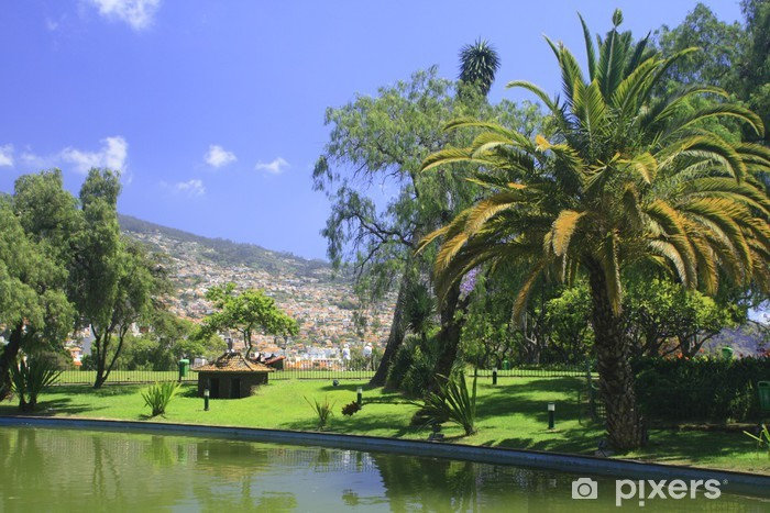 Vinyl Fotobehang Madeira, Funchal - Vakantie