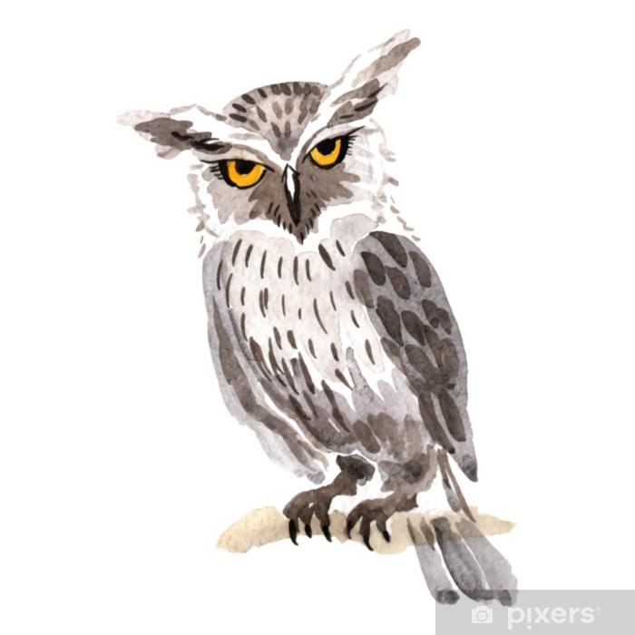 Naklejka Pixerstick Niebo ptak sowa w przyrodzie przez wektor styl na białym tle. dzika wolność, ptak z latającymi skrzydłami. aquarelle ptak dla tła, tekstury, wzór, rama, granicy lub tatuaż. - Zwierzęta