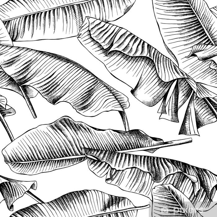 Sømløs mønster med billede af en banan blade. vektor sort og hvid illustration. Vindue og glas klistermærke - Planter og Blomster