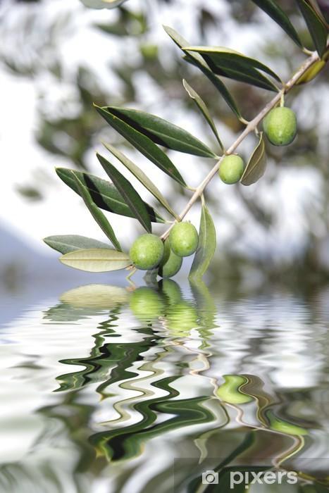 Papier peint vinyle Olive riflesse - Olives