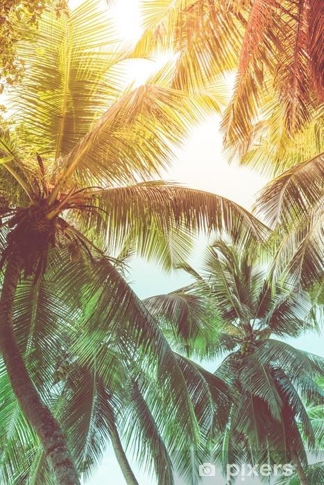 Carta Da Parati Palme.Carta Da Parati Palme Alte Su Una Spiaggia Tropicale Pixers