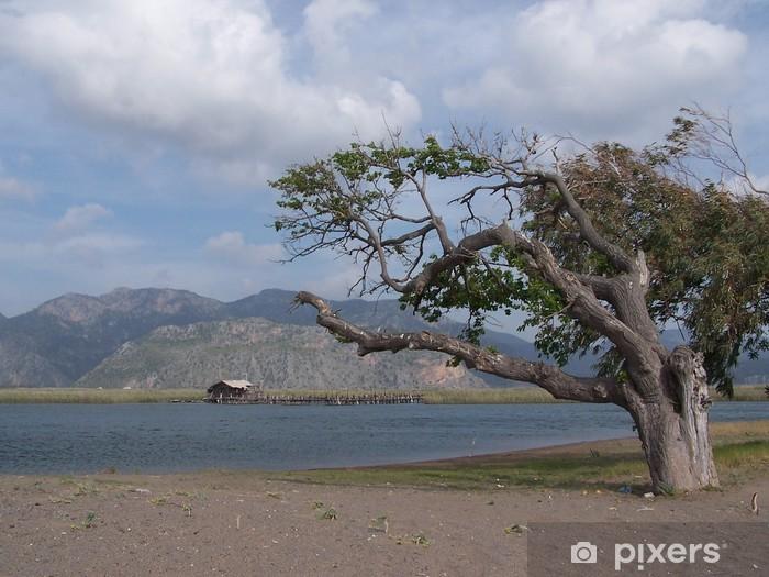 Fototapeta winylowa Wygięte drzewo - Sporty na świeżym powietrzu