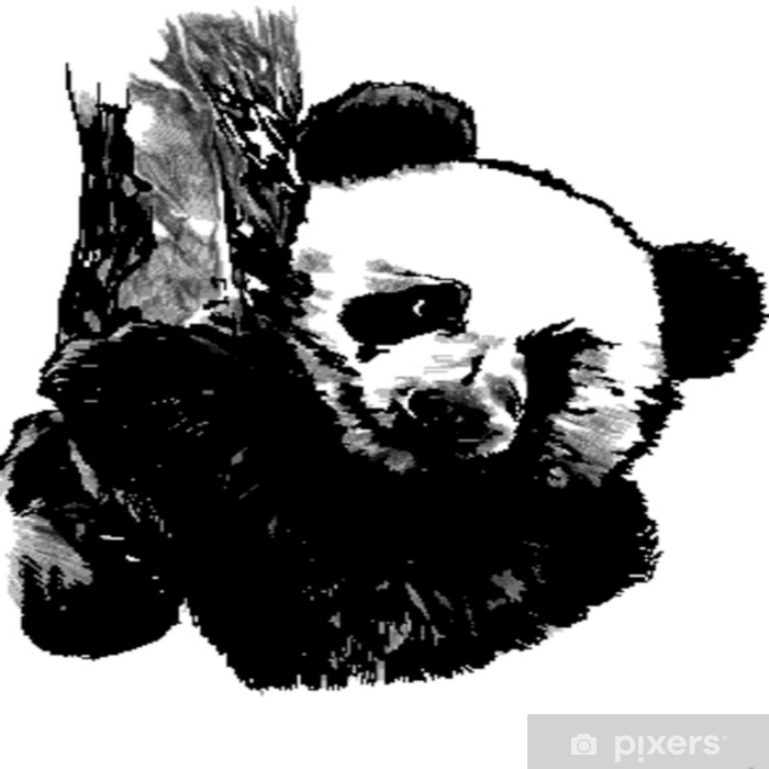 f6b3244529d Panda sketch vector graphics hanging on the branch of a monochrome bitmap  Vinyl Wall Mural -
