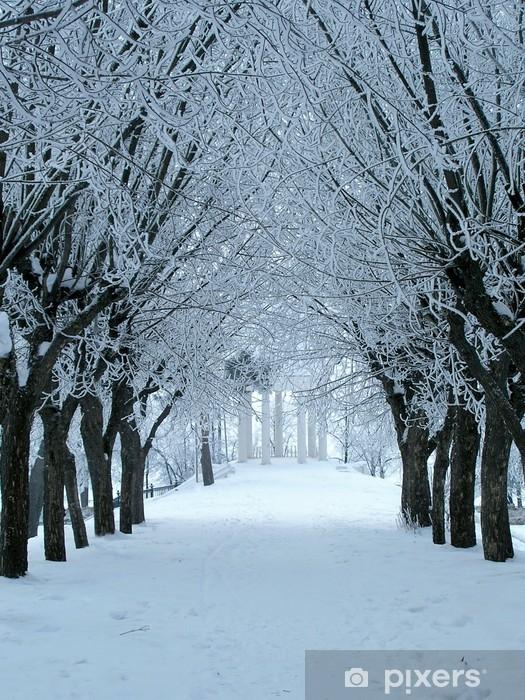 Vinyl-Fototapete Winter alley - Jahreszeiten