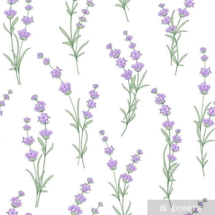 Seamless pattern of lavender flowers on a white background. Watercolor pattern with Lavender for fabric swatch. Seamless pattern for fabric. Vector illustration. Pixerstick Sticker - Lifestyle