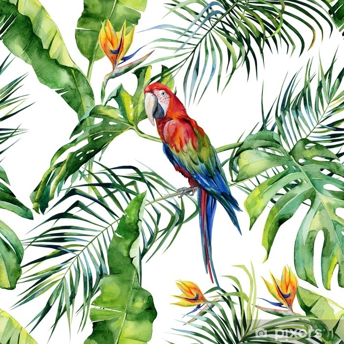 Sticker Pixerstick Illustration aquarelle transparente de feuilles tropicales, jungle dense. perroquet macaw écarlate. strelitzia reginae fleur. peinte à la main. modèle avec motif tropique d'été. feuilles de cocotier. - Ressources graphiques