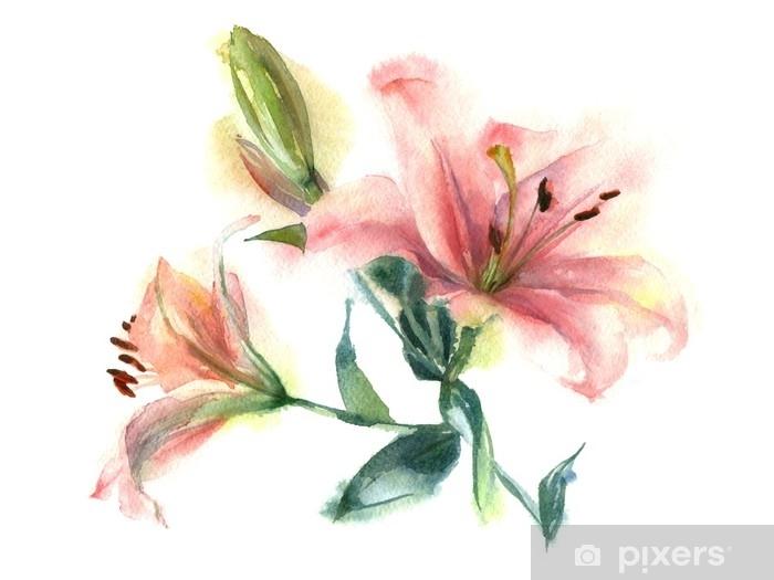 Fiori Giglio.Carta Da Parati Pittura Ad Acquerello Di Fiori Giglio Rosa Su Uno