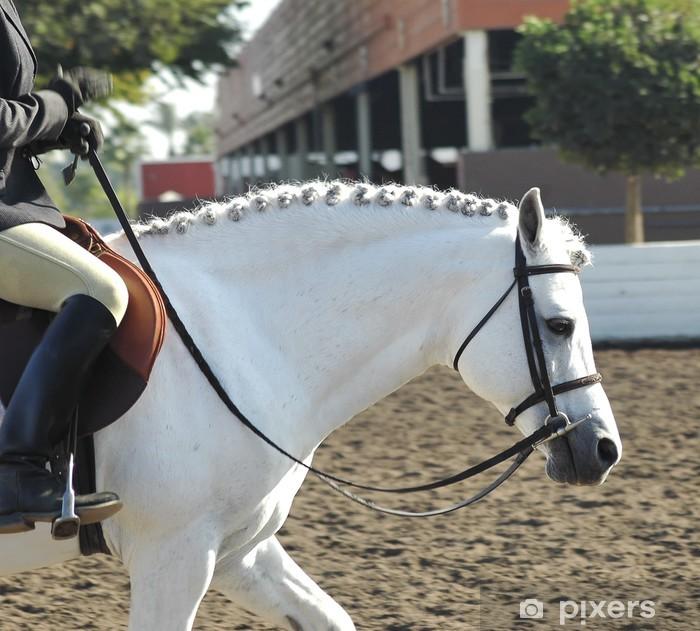 Fototapeta winylowa Pony45 - Sukces i osiągnięcia