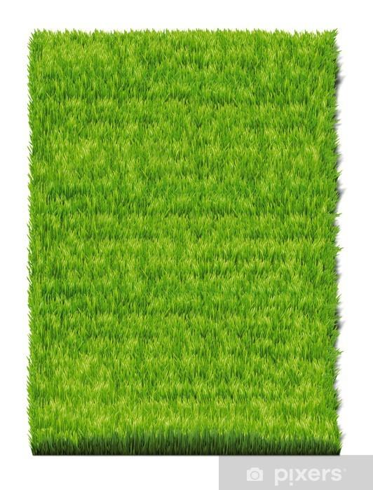 Vinyl-Fototapete Grass plot - Jahreszeiten