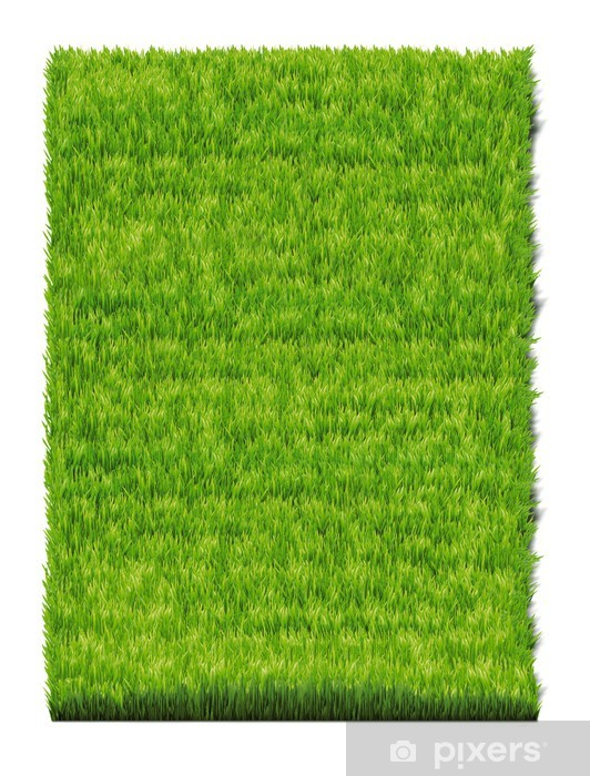 Fototapeta winylowa Grass-plot - Pory roku