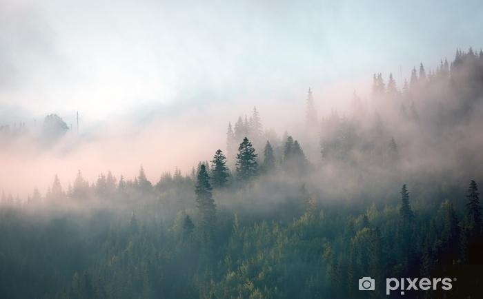 Papier Peint Brume Matinale Dans La Foret De Montagne Pixers