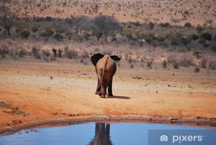 Sticker Pixerstick Elefant - Afrique
