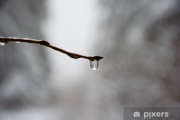 Fototapeta winylowa Snowbreak - Woda