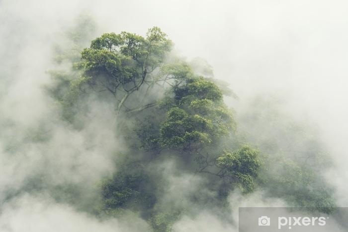 Naklejka Pixerstick Las tropikalny w Japonii, vintage filtr obrazu - Krajobrazy