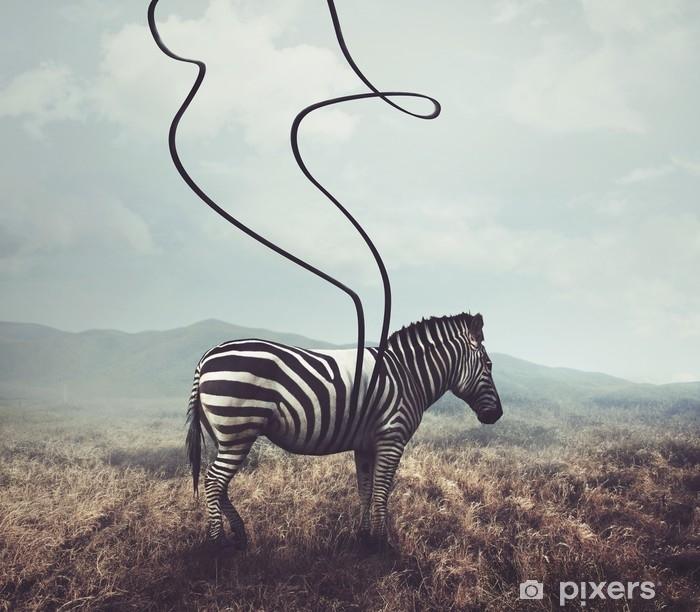 Fotomural Lavable Cebra y rayas - Animales