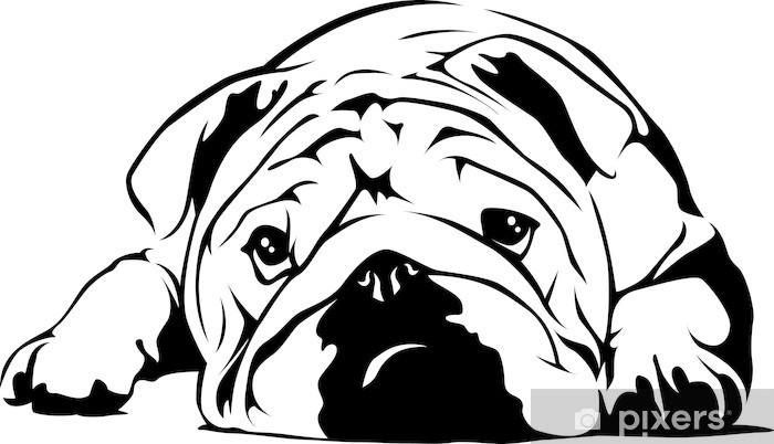 Papier peint vinyle Bulldog english - Sticker mural