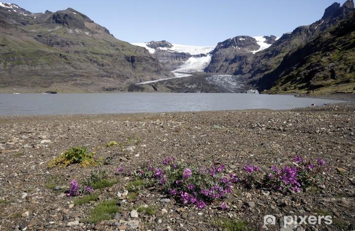 Vinyl-Fototapete Morsarjokul - Teil Vatnajokul Gletscher - Europa