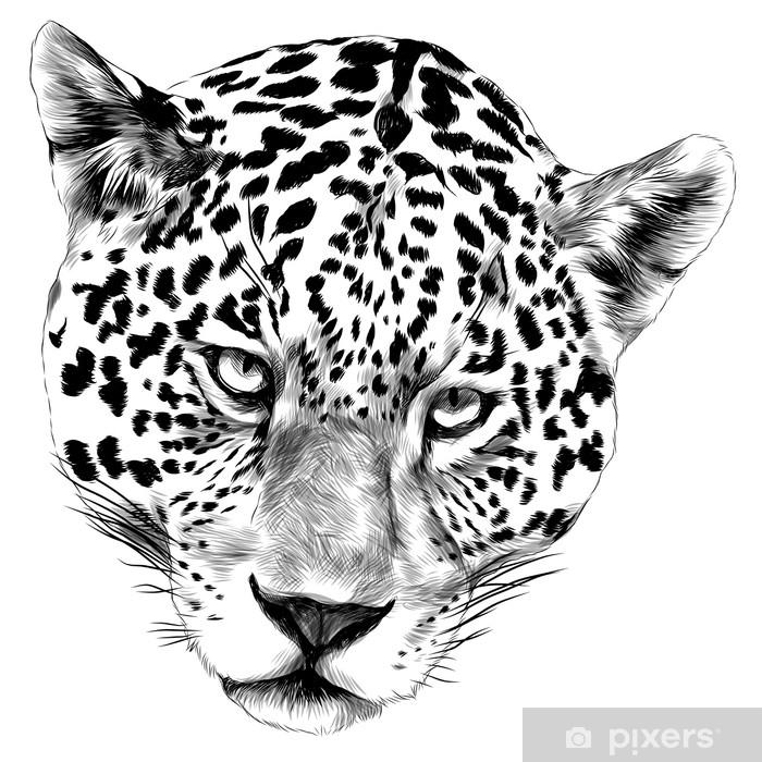 Adesivo Disegno Monocromatico Bianco E Nero Di Grafica Vettoriale