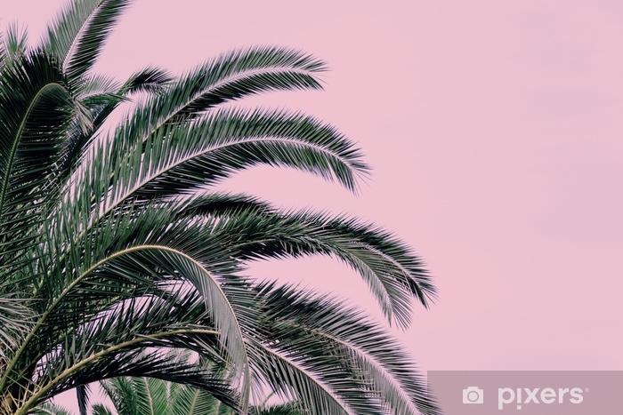 Zelfklevend Fotobehang Deel van een palmboom op een roze achtergrond. kopie ruimte. - Bloemen en Planten
