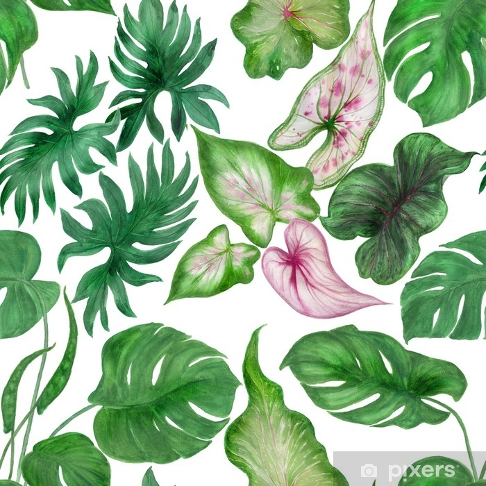 Watercolor Painting Seamless Pattern With Tropical Leaves Wall Mural Pixers We Live To Change Find images of tropical leaves. watercolor painting seamless pattern with tropical leaves wall mural pixers we live to change