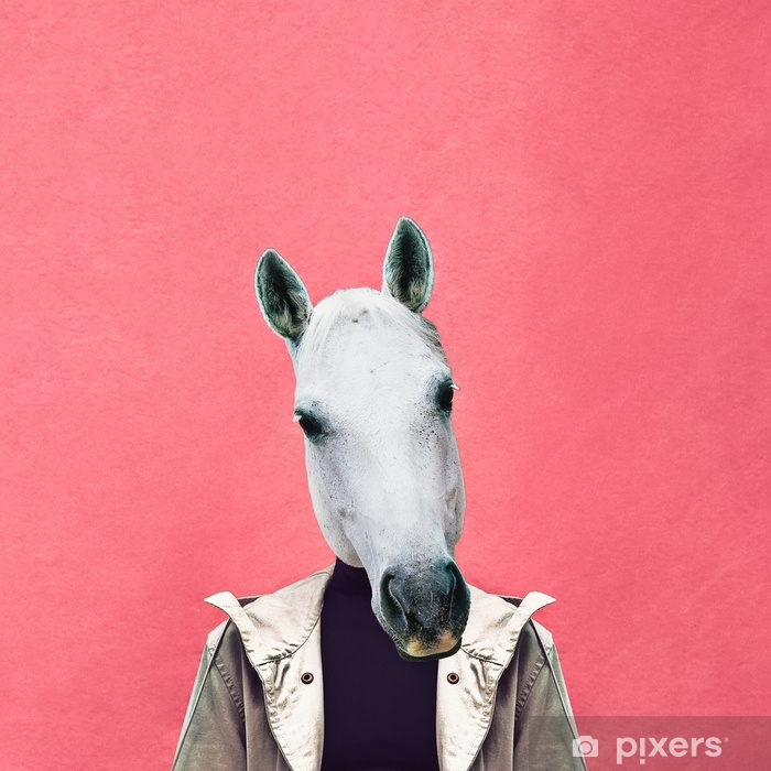 Contemporary art collage. Man horse on pink wall background. Jeans outfit Pixerstick Sticker - Graphic Resources
