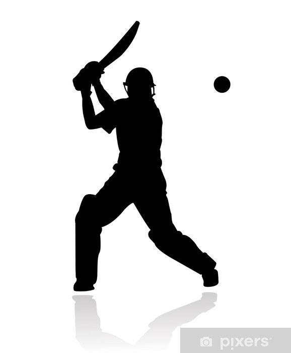 cricket player in action silhouette Vinyl Wall Mural - Team Sports