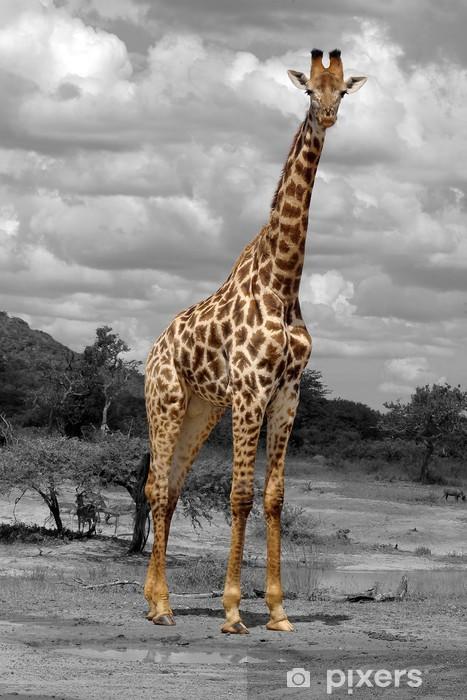 Sticker Pixerstick Girafe -