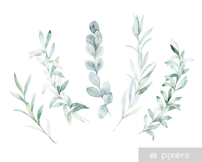 Fototapeta winylowa Akwarela kwiatowy zestaw. ręcznie rysowane na białym tle ilustracja. tło botaniczne - Rośliny i kwiaty