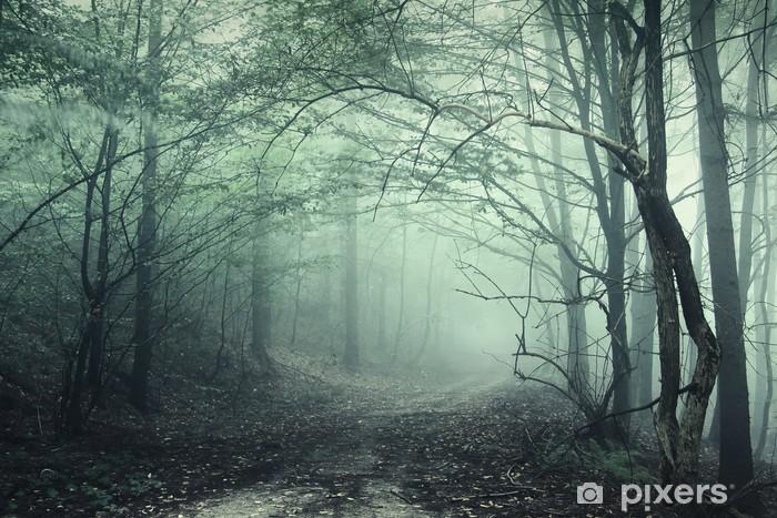Nálepka Pixerstick Mlha v lese - Témata