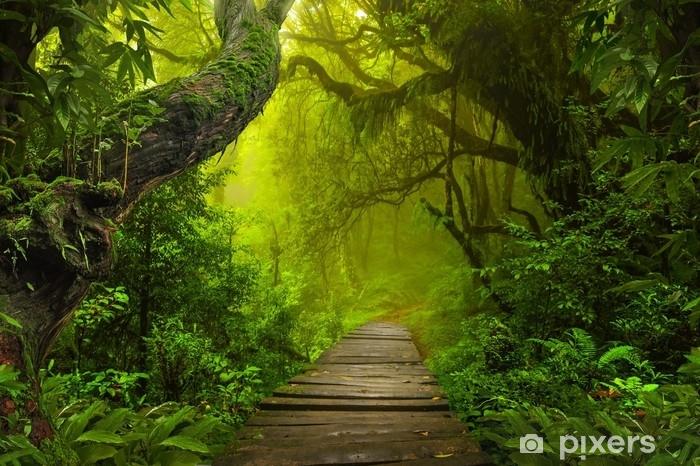 Asian rainforest jungle Vinyl Wall Mural - Landscapes