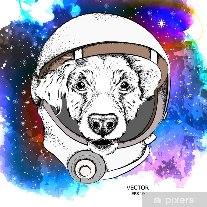 Fototapeta Kresleny Kokrspanel Ve Vesmirnem Obleku Astronautu