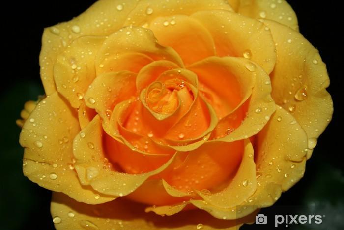 Sticker Pixerstick L'eau de Rose - Couples