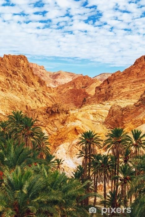 Papier Peint Vue Panoramique Sur Loasis De Montagne Chebika