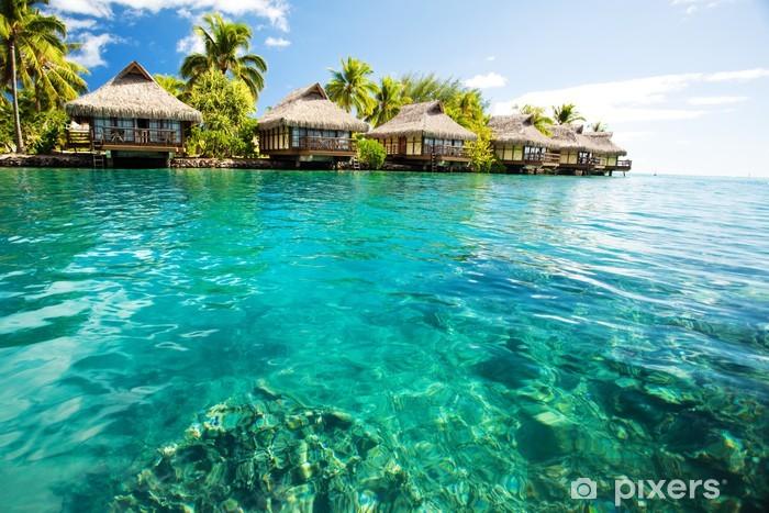 Fototapeta winylowa Ponad bungalowy wody z kroków w zielonej lagunie - Palmy