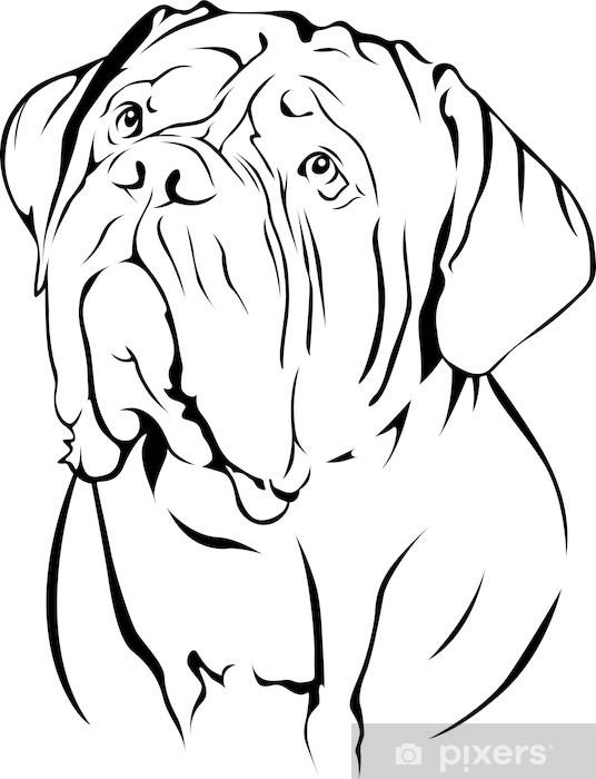 Papier peint vinyle Dogue De Bordeaux portrait - Sticker mural