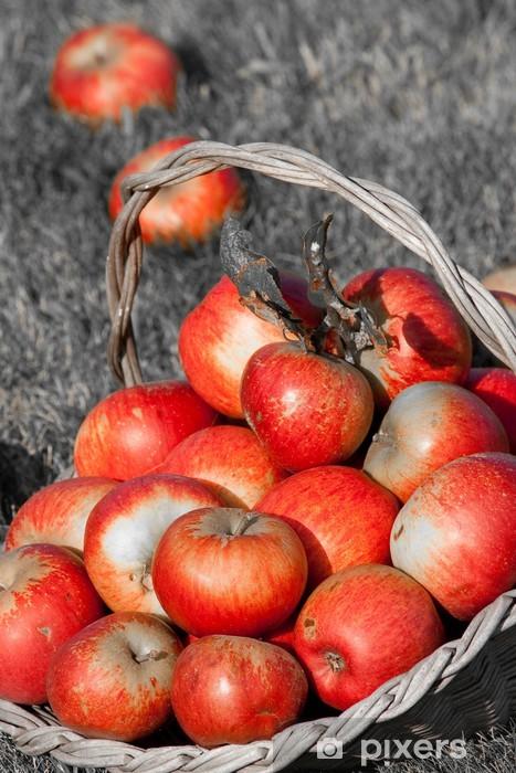 Pixerstick Aufkleber Rot und schwarz - Jahreszeiten