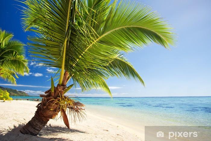 Sticker Pixerstick Petit palmier qui pèse sur lagon magnifique - Saisons
