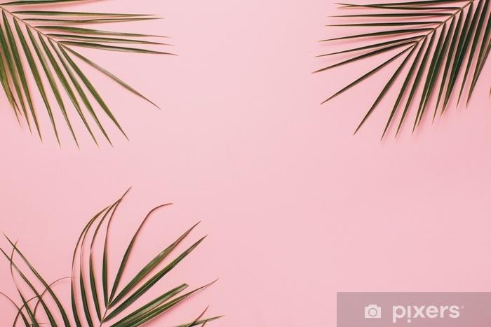 Afwasbaar Fotobehang Palmbladeren op een roze achtergrond. minimale en vlakke lay. - Bloemen en Planten