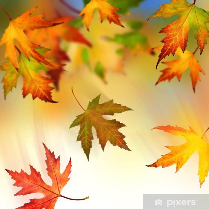 Papier peint vinyle La chute des feuilles d'automne - Saisons