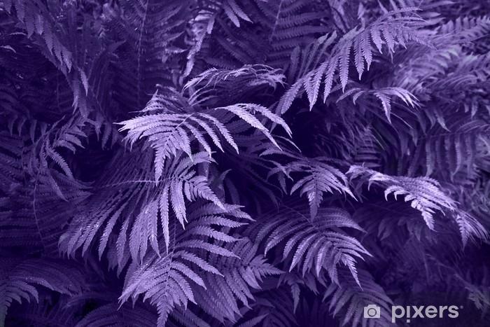 Lehtien lehtiä sadepisaroilla, trooppinen tausta. ultravioletti luova väri. luonto taustalla. Pixerstick tarra - Graafiset Resurssit