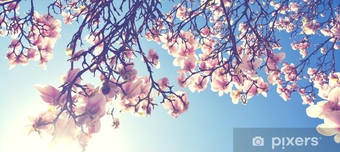 Sticker Pixerstick Magnolien blüte im frühling - Paysages